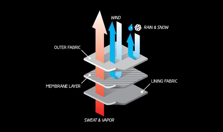 2008-oneill-diagram-1